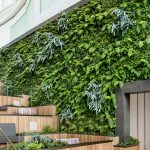 del amo fashion centre living wall torrence california habitat horticulture archute 1