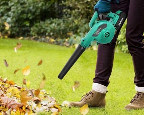 lightweight leaf blower reviews